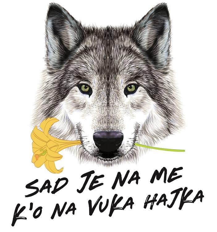 Senad Kapo: I opet je na njeg' k'o na vuka hajka (Vol.2)